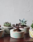 Small Handmade Concrete Planters